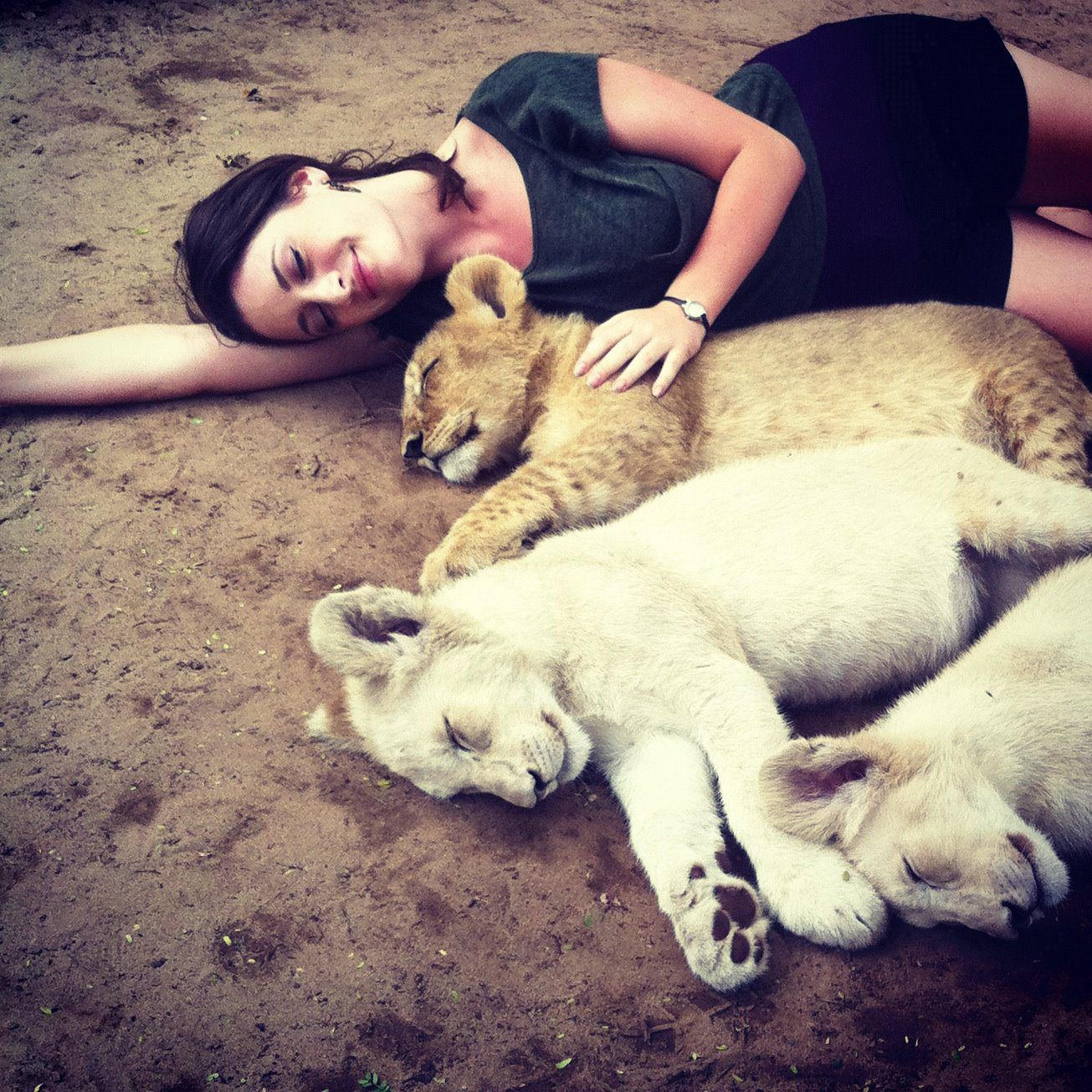 Cuddling with baby lions in South Africa